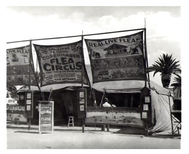Flea Circus11 - Cal Lipes Original Copenhagen Flea Circus