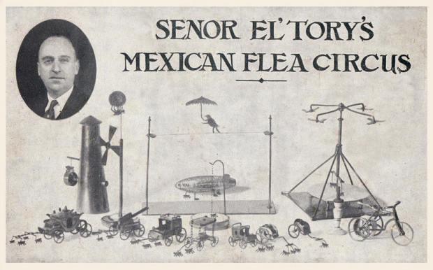 Flea Circus8 - Senor El Torys Mexican Flea Circus